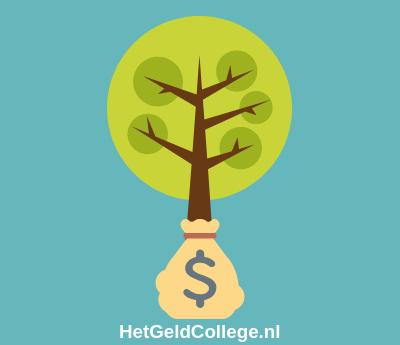 spaargeld duurzaam beleggen 2019